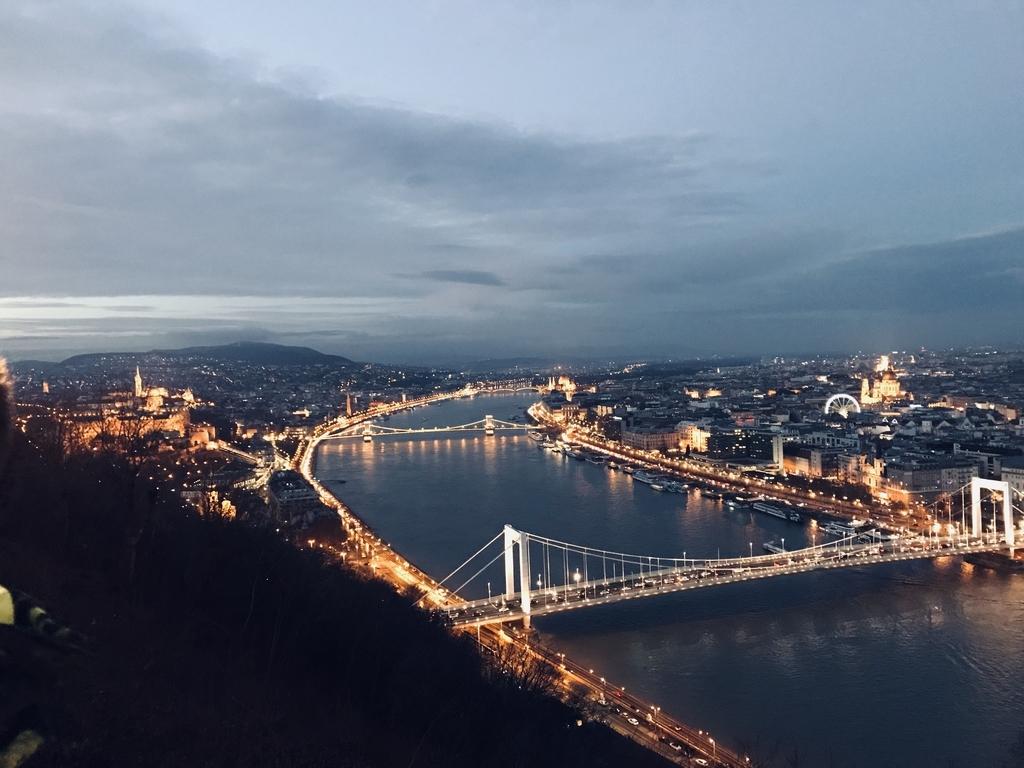 ゲッレールトの丘からの夜景