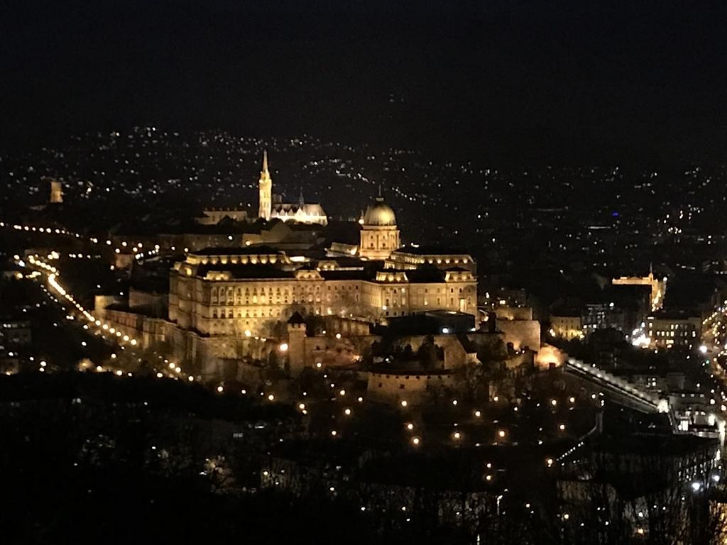 ゲッレールトの丘から見たブダ王宮の夜景