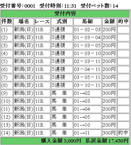 f:id:yamagatakashin:20170903161017j:plain