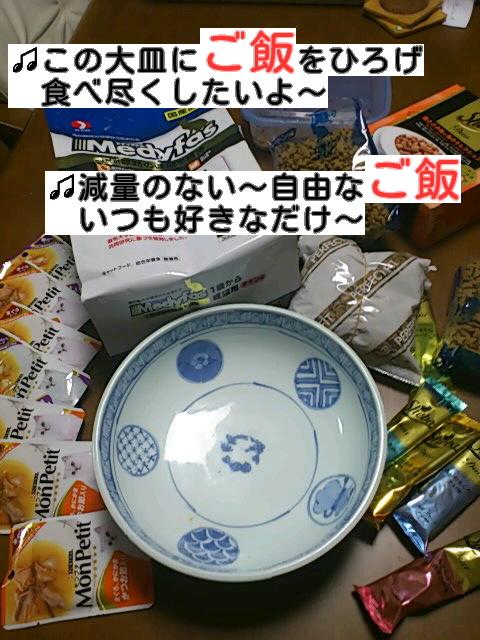 f:id:yamagatamyclus:20121202211246j:image