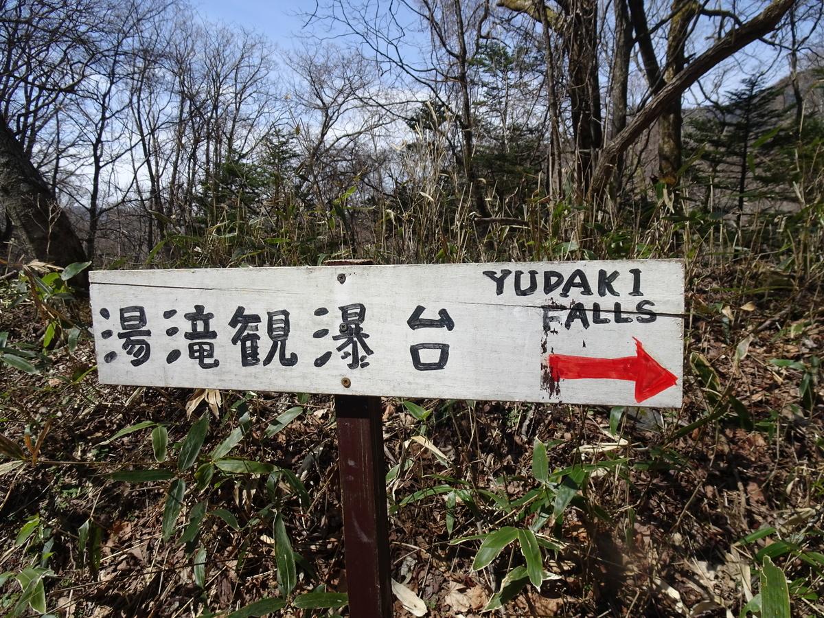 f:id:yamagishi_tea:20210524214359j:plain