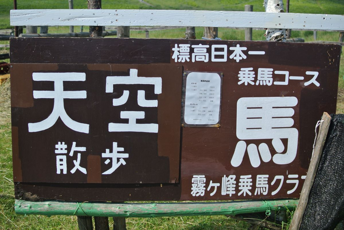 f:id:yamagoya-life:20210721142859j:plain