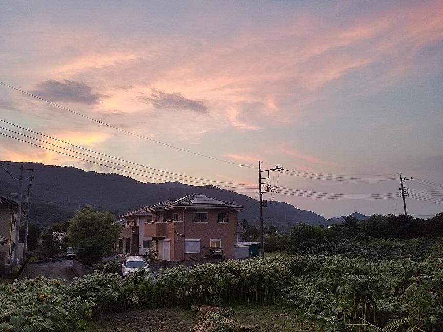 f:id:yamaguchinouen:20180802213612j:plain