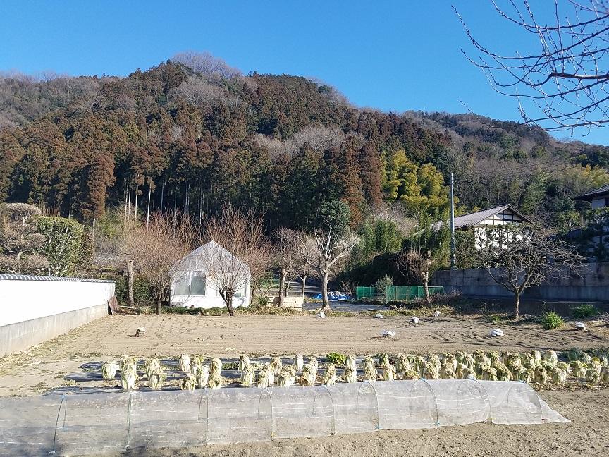 f:id:yamaguchinouen:20190218224118j:plain