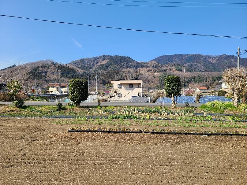 f:id:yamaguchinouen:20210304230932j:plain