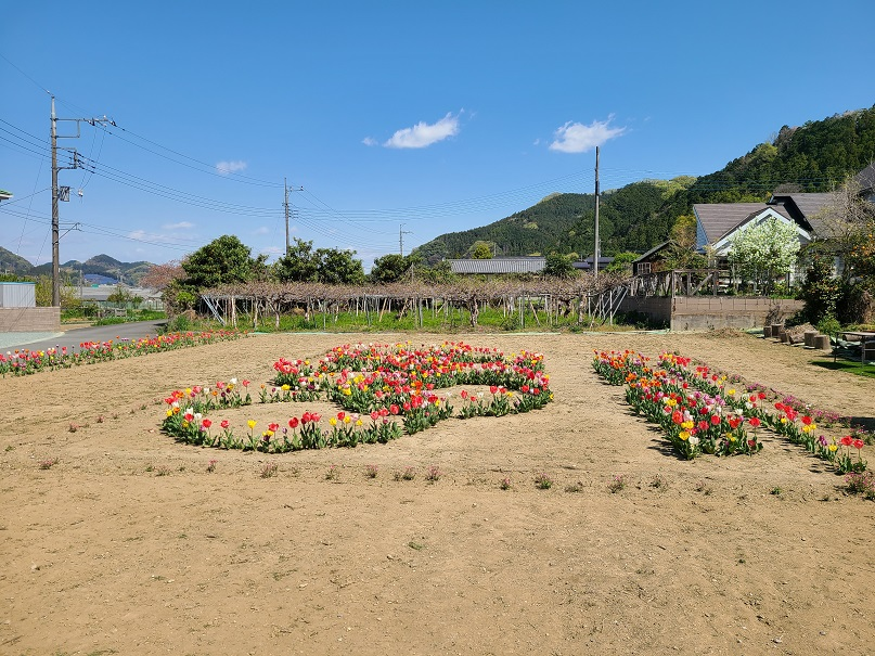 f:id:yamaguchinouen:20210409231643j:plain