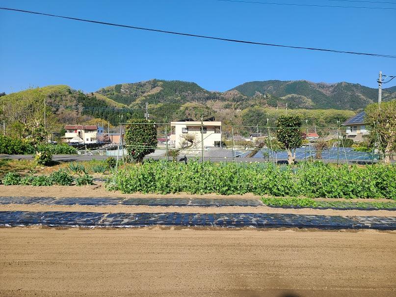 f:id:yamaguchinouen:20210411222320j:plain