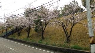 f:id:yamahiro0504:20170408111902j:plain