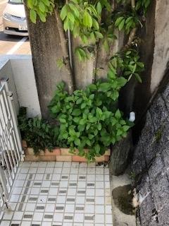 f:id:yamahiro0504:20180428154459j:plain