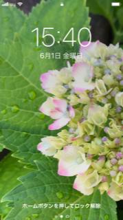 f:id:yamahiro0504:20180601154215p:plain