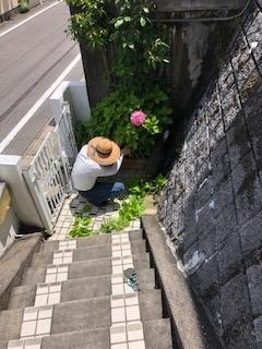 f:id:yamahiro0504:20180707105512j:plain