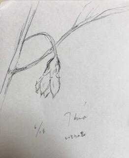 f:id:yamahiro0504:20180707115740j:plain