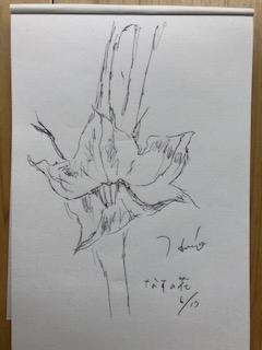f:id:yamahiro0504:20180707120003j:plain
