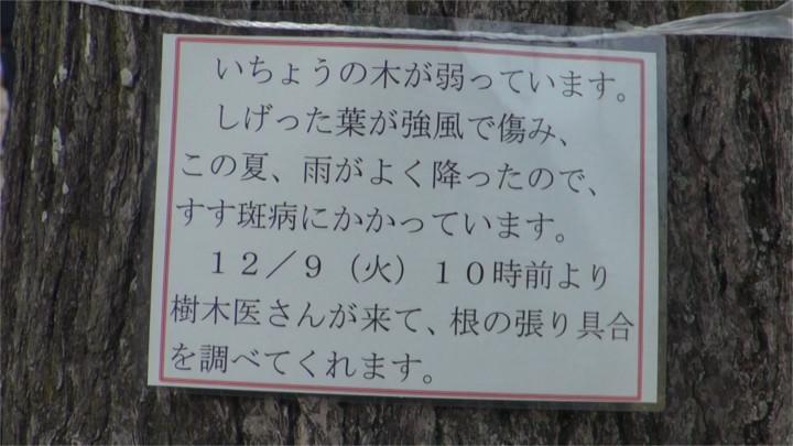 f:id:yamajikai:20141214163354j:image:w360