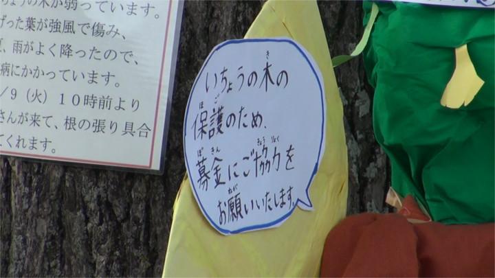 f:id:yamajikai:20141214163356j:image:w360
