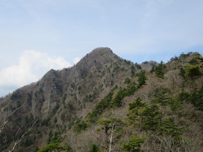 f:id:yamajoshi:20150430151304j:plain