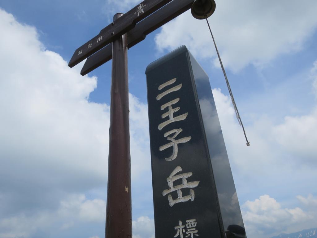 f:id:yamajoshi:20160617111342j:plain