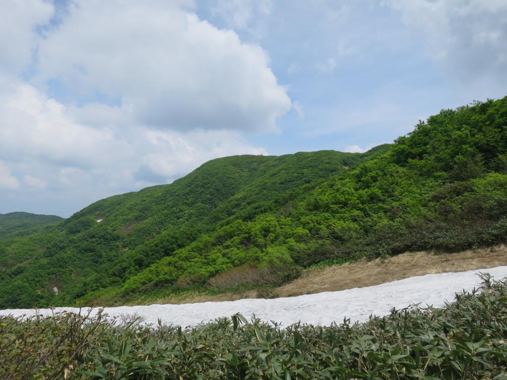 f:id:yamajoshi:20160620131308j:plain
