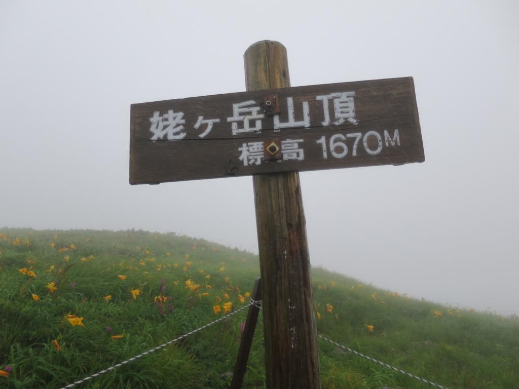 f:id:yamajoshi:20160725174532j:plain