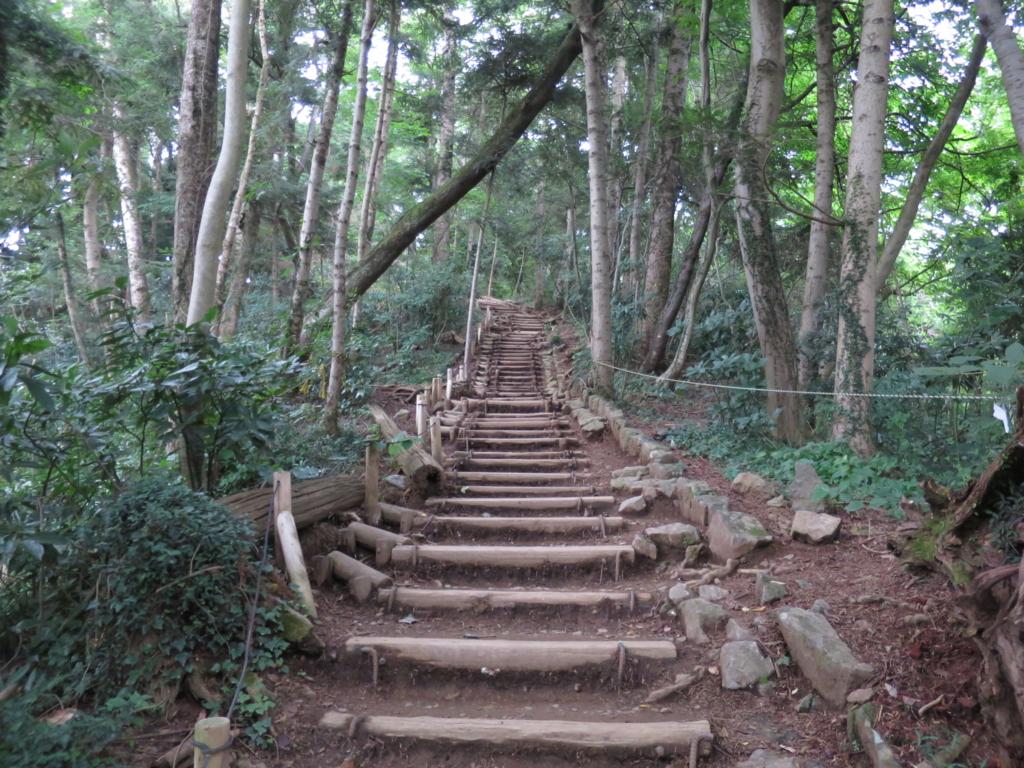 f:id:yamajoshi:20160822111805j:plain