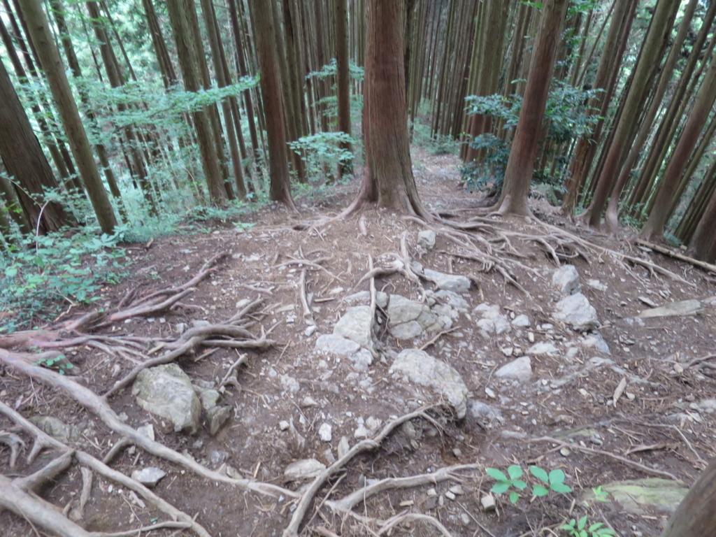f:id:yamajoshi:20160822121538j:plain