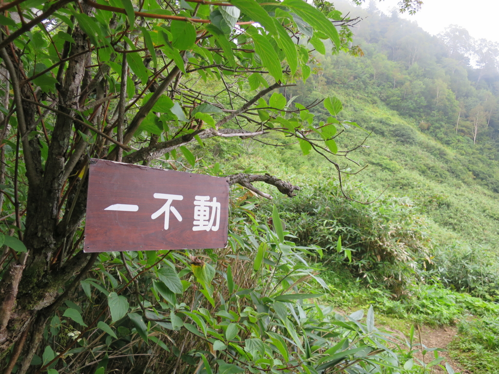 f:id:yamajoshi:20160929115523j:plain