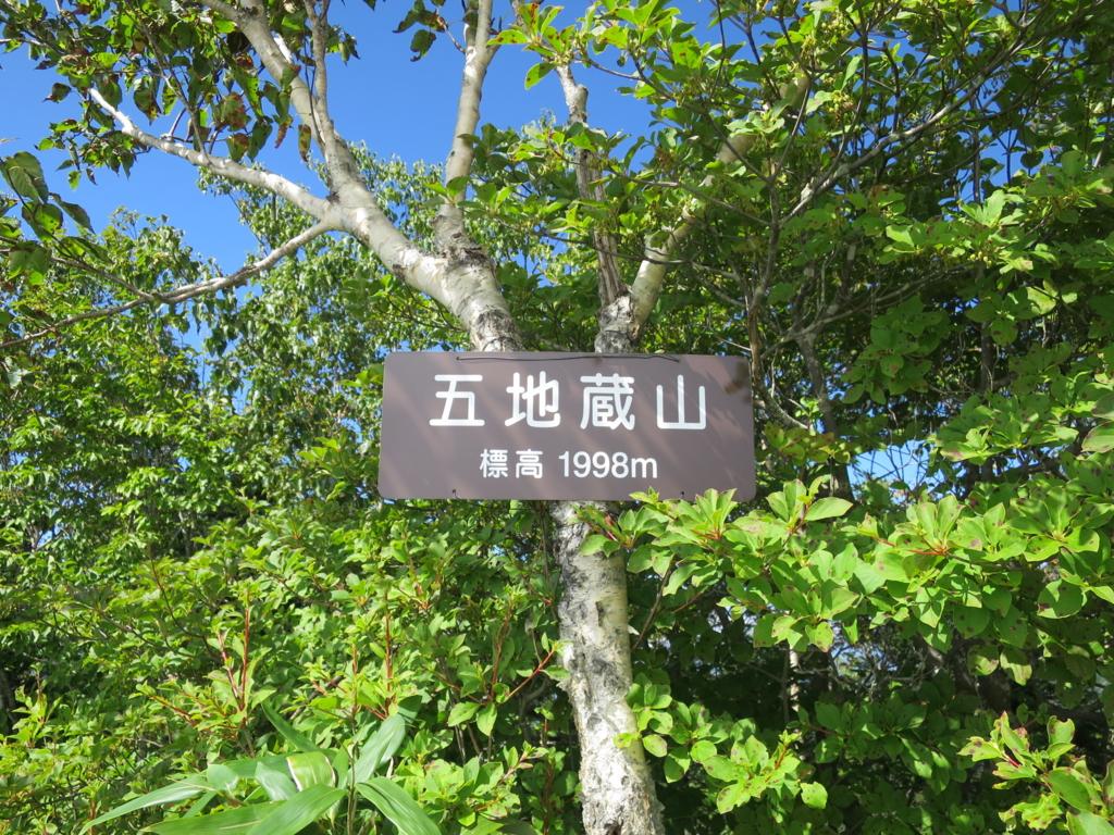 f:id:yamajoshi:20160930105656j:plain