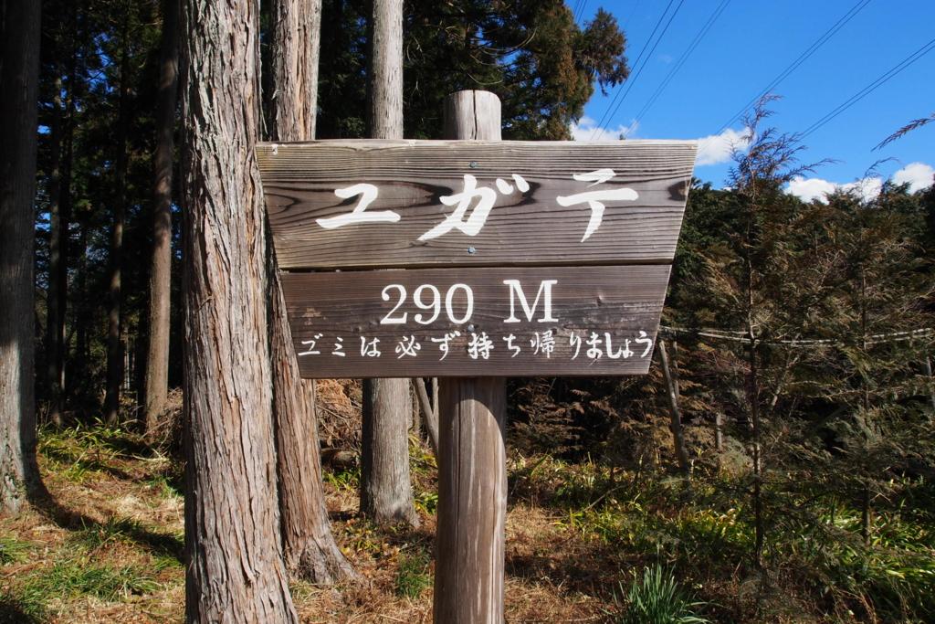 f:id:yamajoshi:20170305171614j:plain