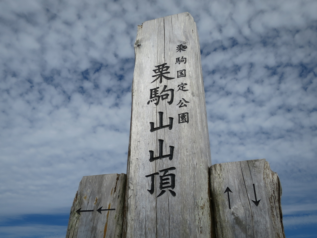 f:id:yamajoshi:20170310233931j:plain