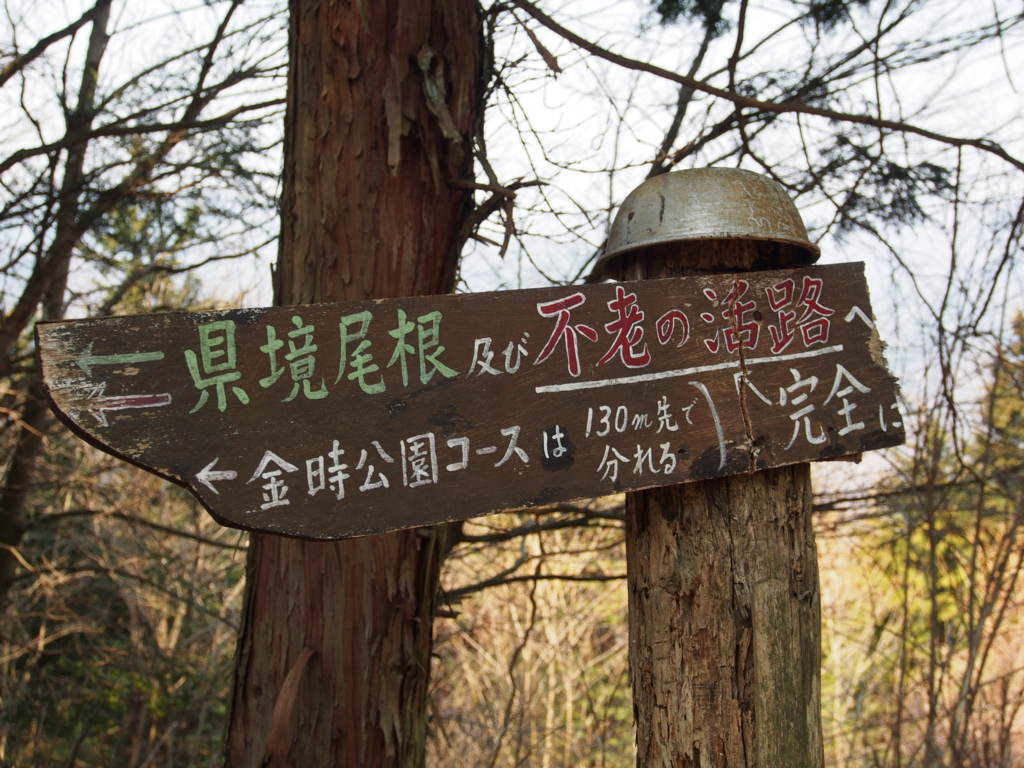 f:id:yamajoshi:20170320172914j:plain