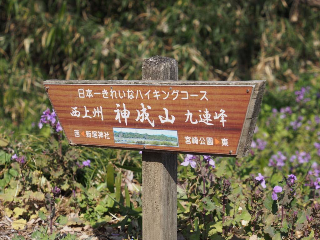 f:id:yamajoshi:20170326133304j:plain