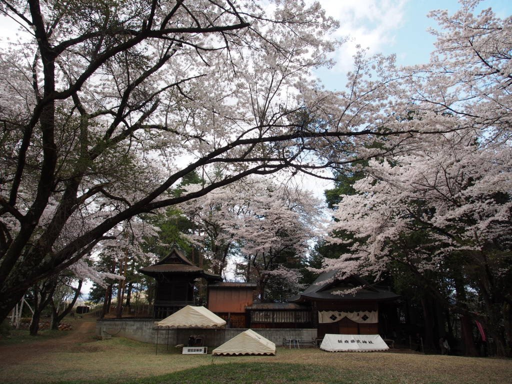 f:id:yamajoshi:20170422135118j:plain