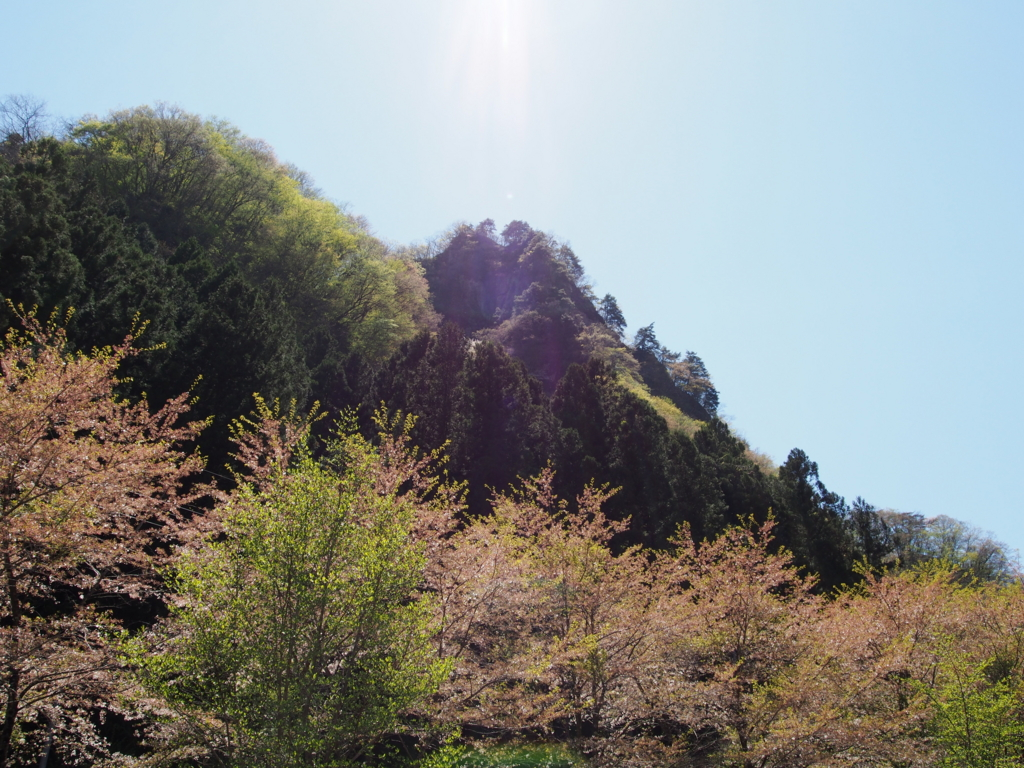 f:id:yamajoshi:20170426213411j:plain