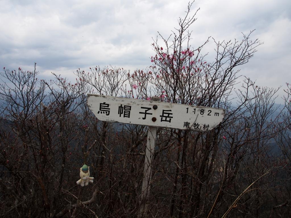 f:id:yamajoshi:20170501220052j:plain