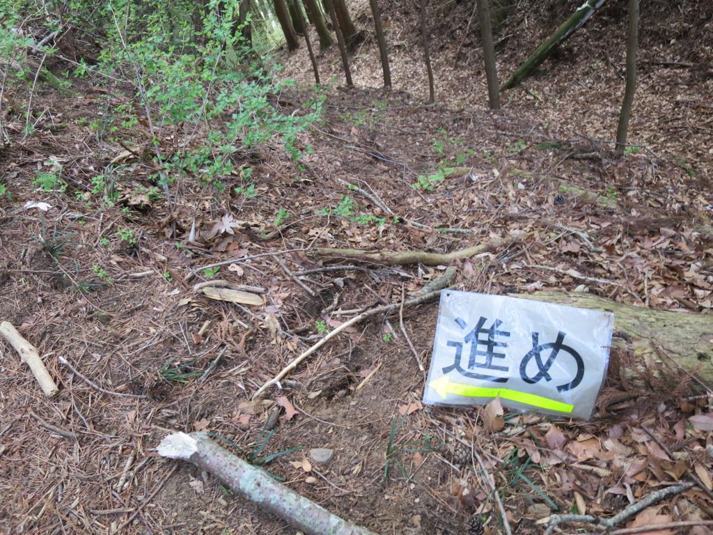f:id:yamajoshi:20170505220810j:plain