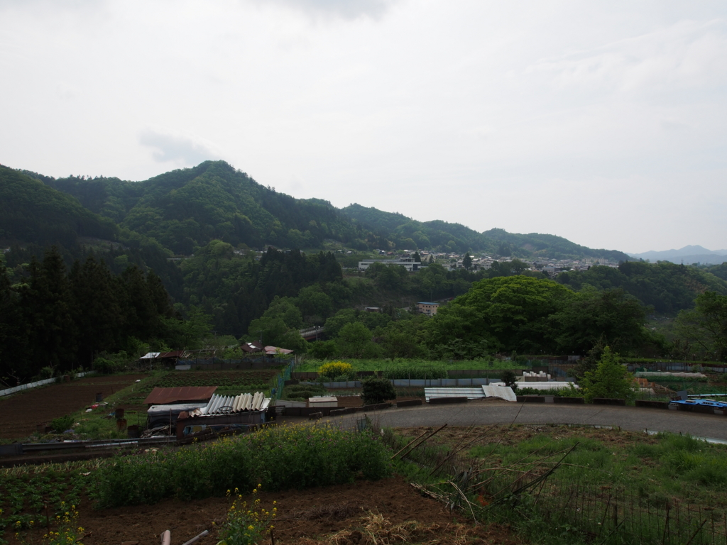 f:id:yamajoshi:20170510221135j:plain