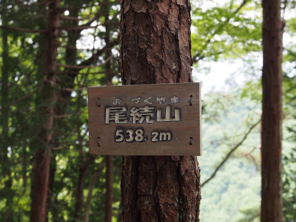 f:id:yamajoshi:20170510231002j:plain