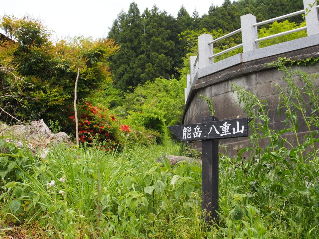 f:id:yamajoshi:20170510231726j:plain