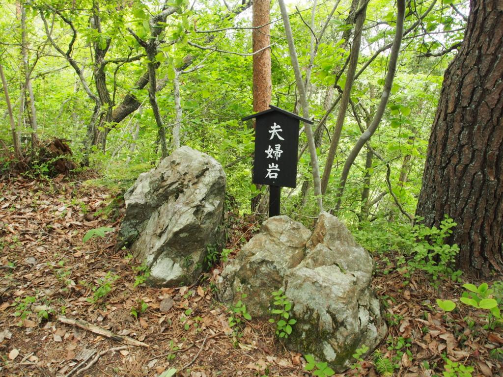 f:id:yamajoshi:20170510233042j:plain