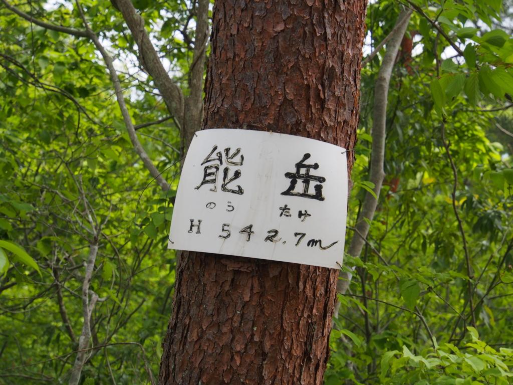 f:id:yamajoshi:20170510233248j:plain