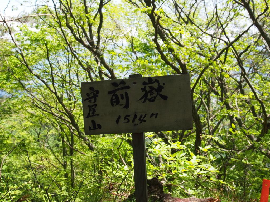 f:id:yamajoshi:20170611105805j:plain