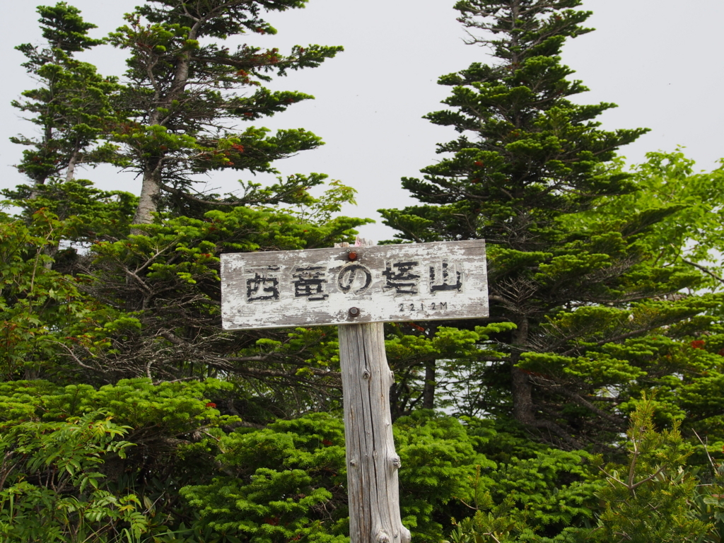 f:id:yamajoshi:20170722175300j:plain