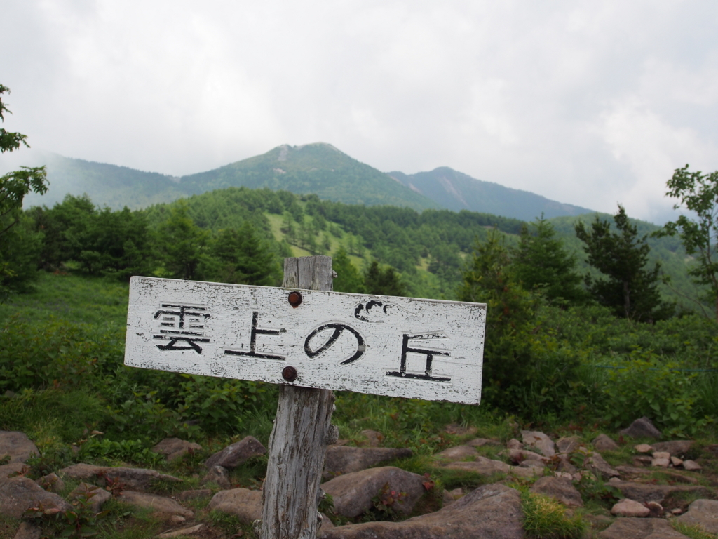f:id:yamajoshi:20170722181931j:plain