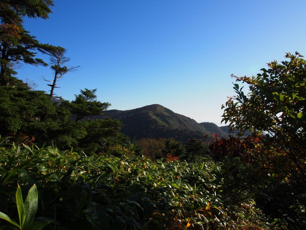 f:id:yamajoshi:20171022012438j:plain