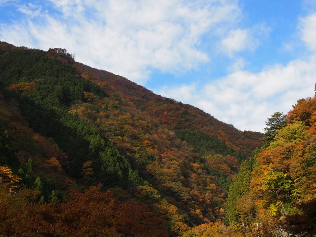f:id:yamajoshi:20171104200038j:plain