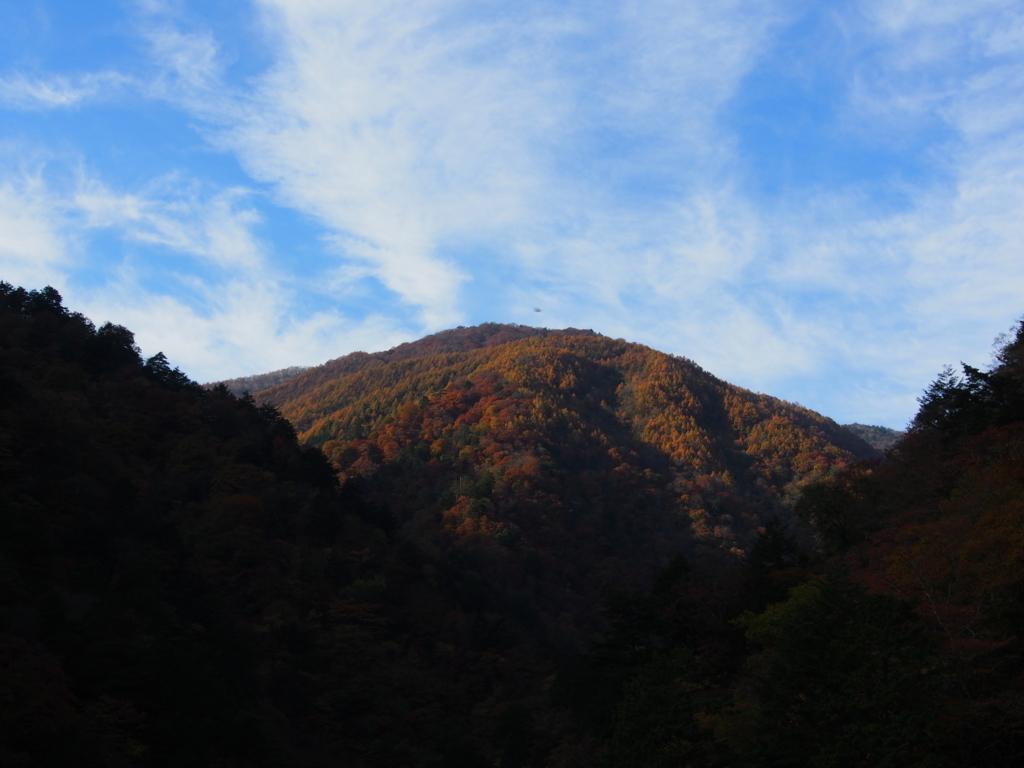 f:id:yamajoshi:20171104202138j:plain