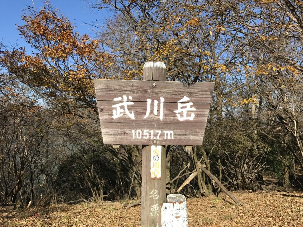 f:id:yamajoshi:20171111113427j:plain