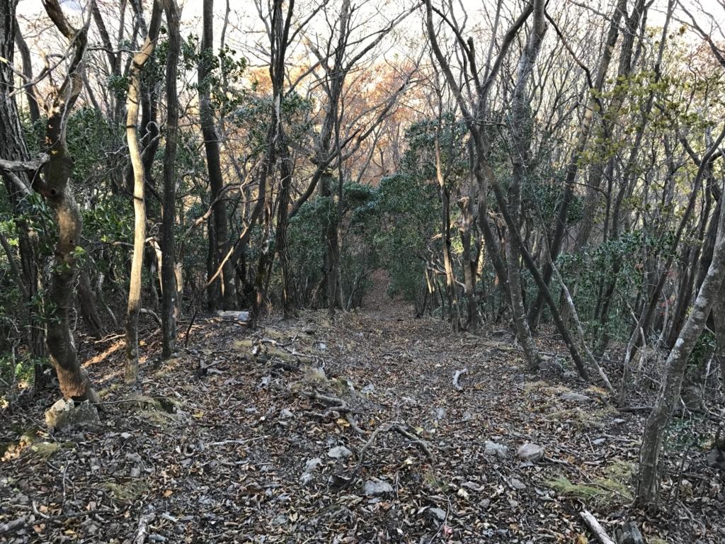 f:id:yamajoshi:20171111124813j:plain