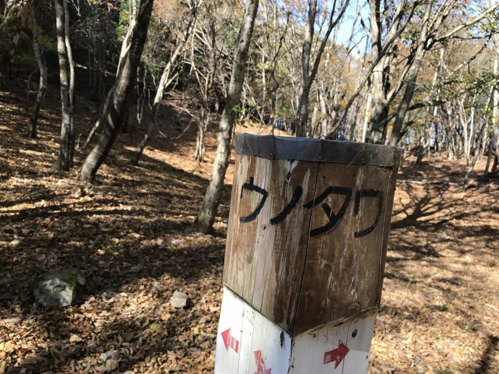 f:id:yamajoshi:20171111134637j:plain