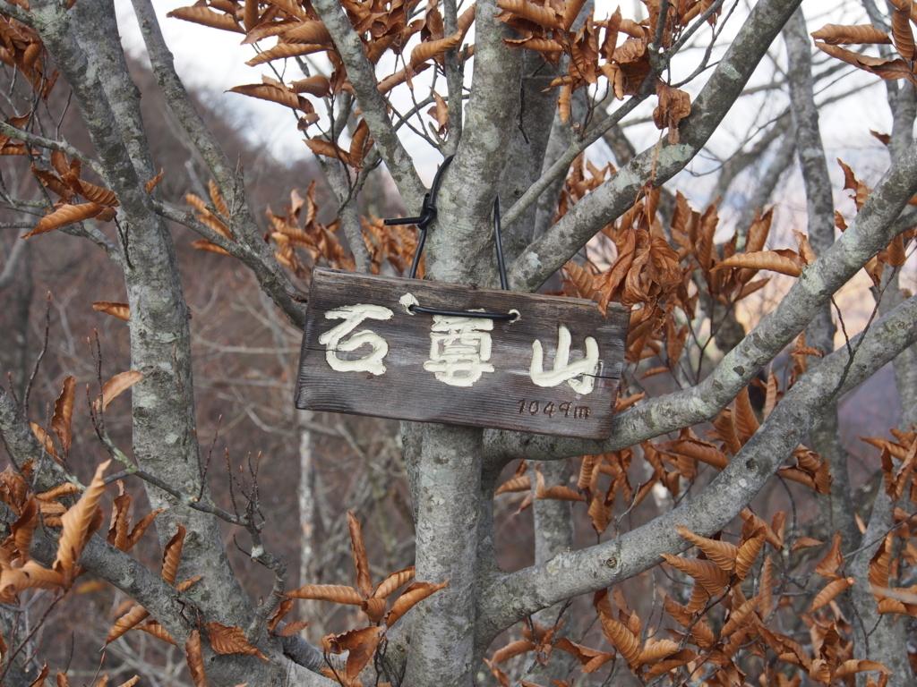 f:id:yamajoshi:20171118132021j:plain